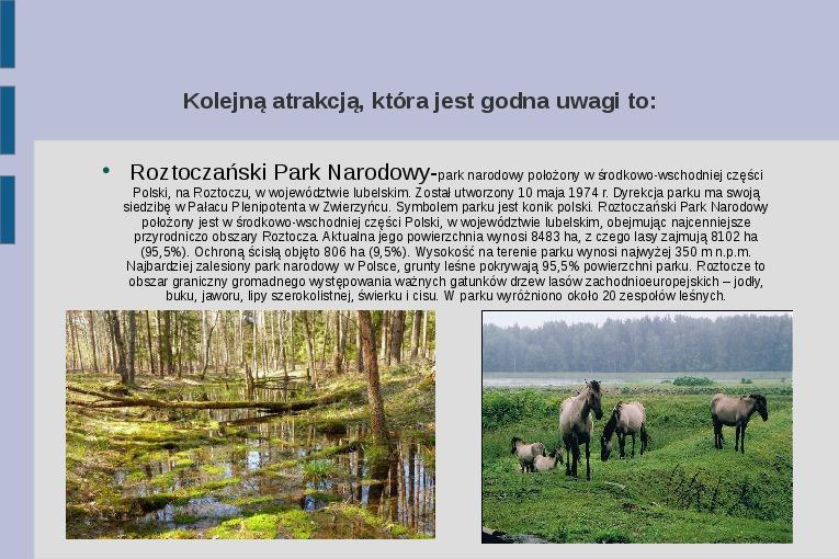 Zabytki i atrakcje Lubelszczyzny - Slajd 4