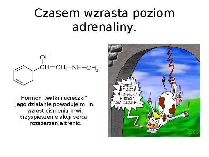 Chemia z życiu codziennym - Slajd 16