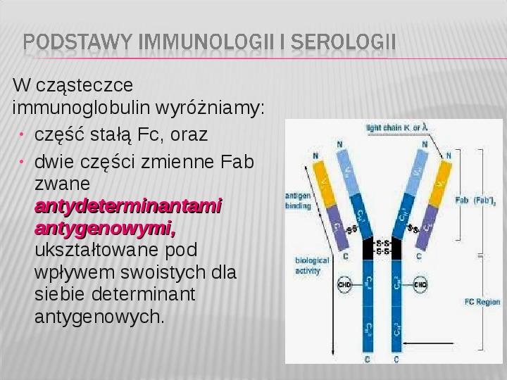 Podstawy immunologii i serologii - Slajd 8