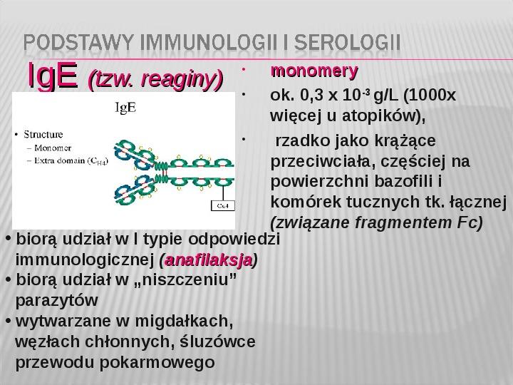 Podstawy immunologii i serologii - Slajd 22