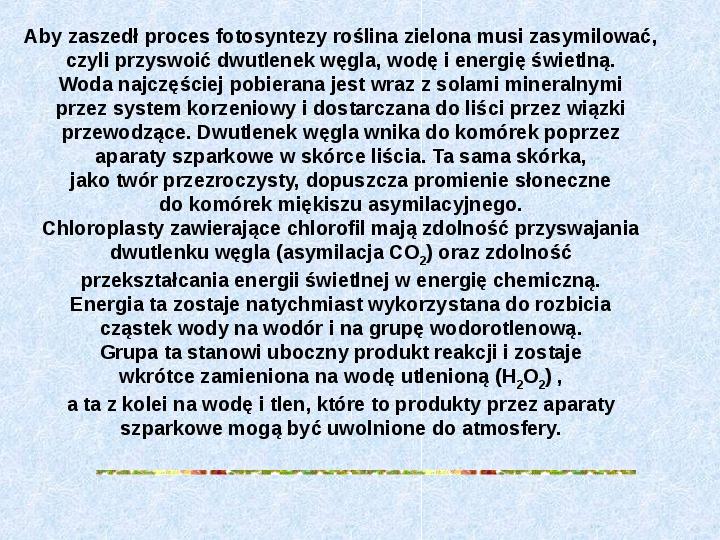 Fotosynteza jako przykład anabolizmu organizmów samożywnych - Slajd 5