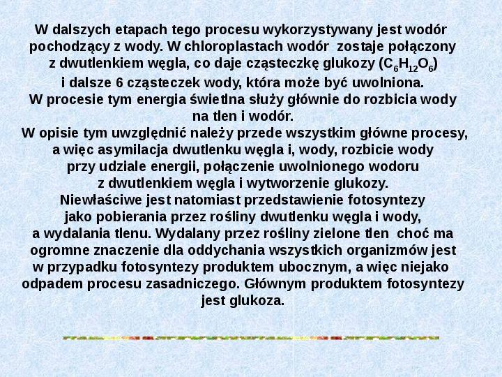 Fotosynteza jako przykład anabolizmu organizmów samożywnych - Slajd 6