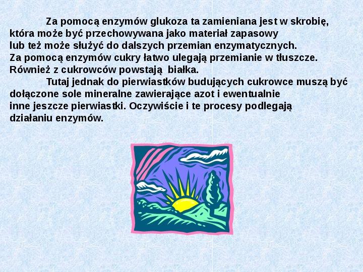 Fotosynteza jako przykład anabolizmu organizmów samożywnych - Slajd 7