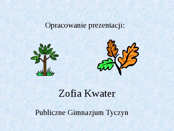 Fotosynteza jako przykład anabolizmu organizmów samożywnych - Slajd 8
