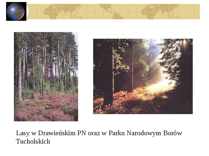 Atrakcje turystyczne Polski - Slajd 13
