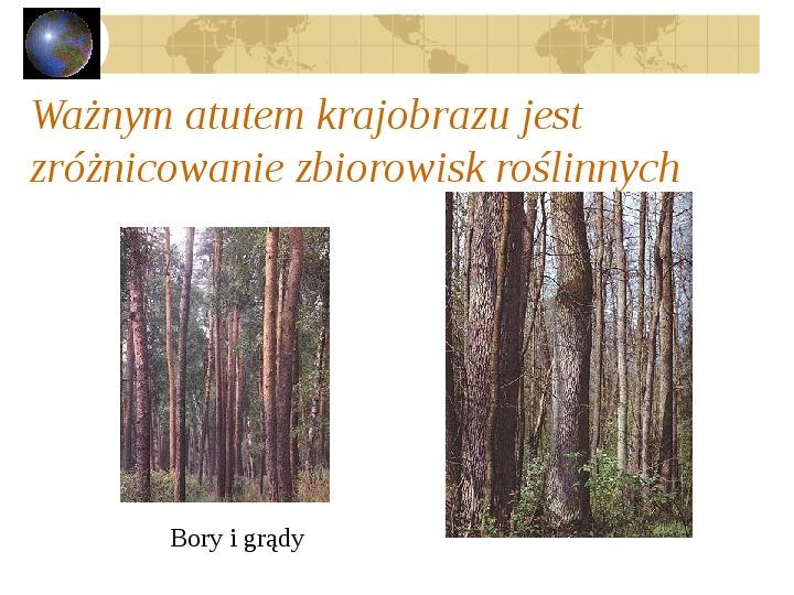 Atrakcje turystyczne Polski - Slajd 26