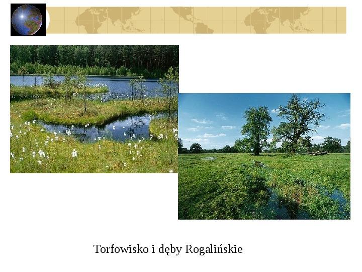 Atrakcje turystyczne Polski - Slajd 28