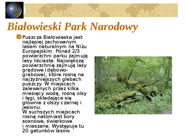Atrakcje turystyczne Polski - Slajd 48