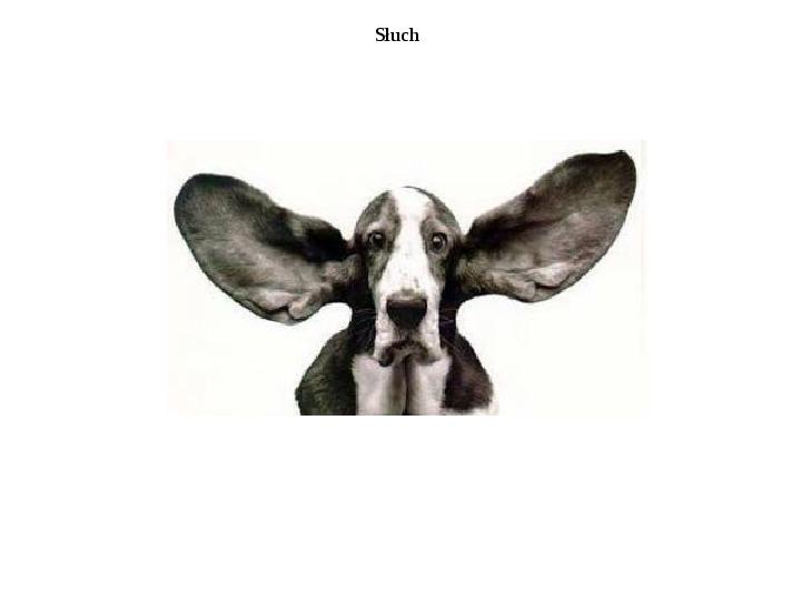 Układ przedsionkowy ucha - Slajd 10