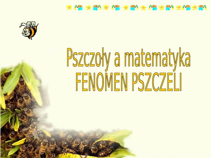 Pszczoły - Slajd 1