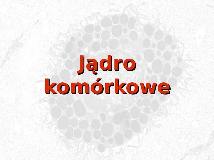 Jądro komórkowe - Slajd 1