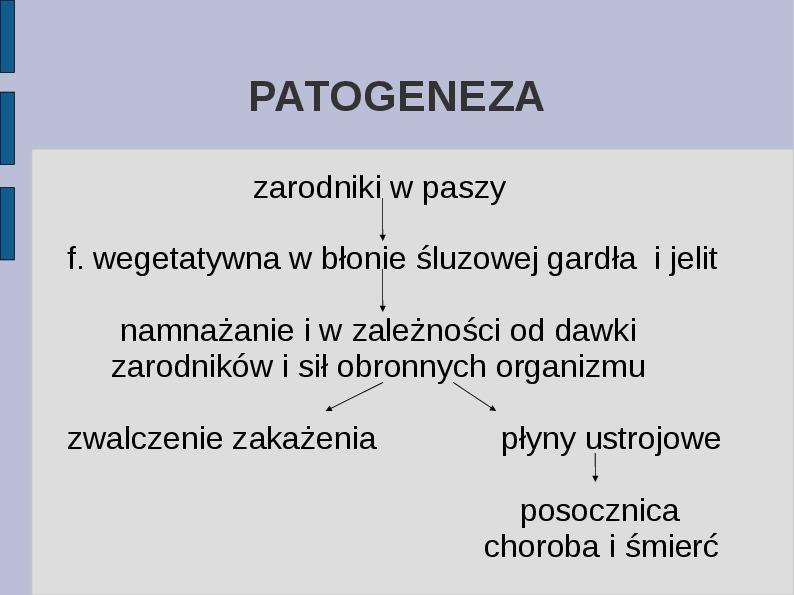 Wąglik - Slajd 7