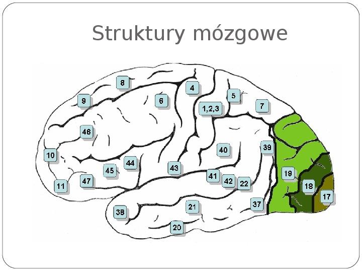 Schematy dla zmysłów - Slajd 45