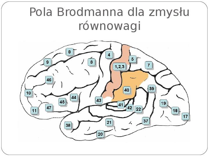 Schematy dla zmysłów - Slajd 90