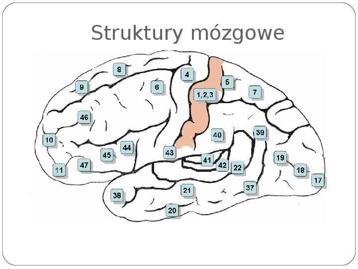 Schematy dla zmysłów - Slajd 118
