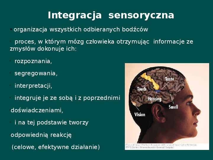 Zespół Aspergera - przyczyny, objawy, funkcjonowanie - Slajd 18