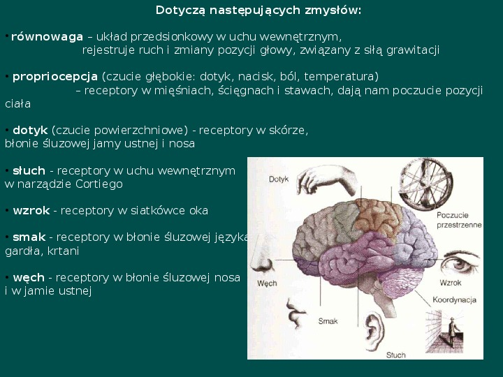 Zespół Aspergera - przyczyny, objawy, funkcjonowanie - Slajd 20