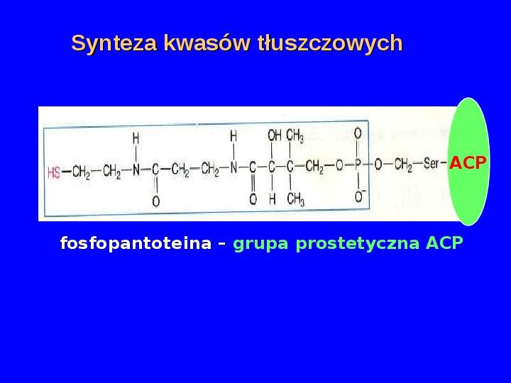 Lipidy - Slajd 9