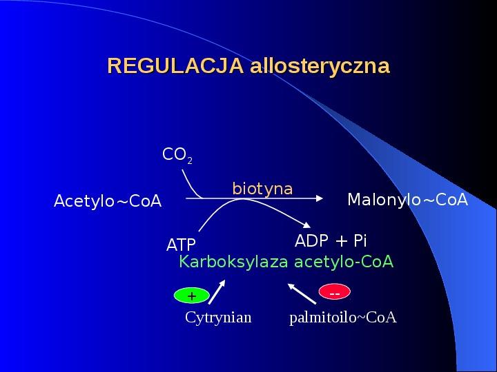 Lipidy - Slajd 11
