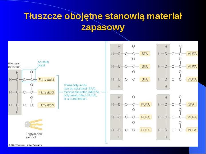 Lipidy - Slajd 17