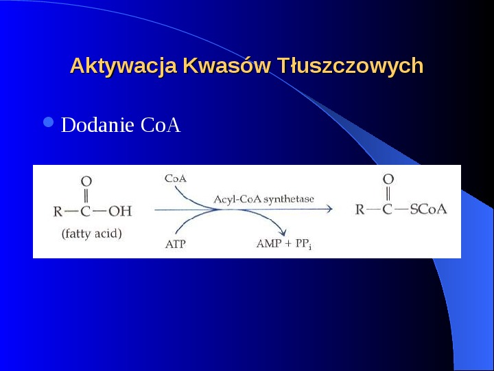 Lipidy - Slajd 20