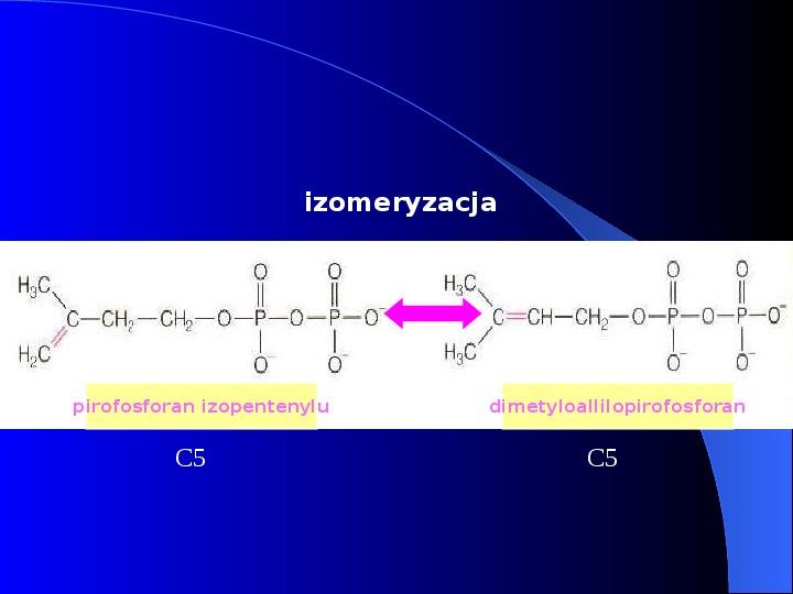 Lipidy - Slajd 32