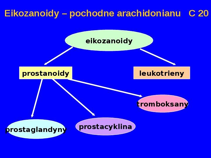 Lipidy - Slajd 42