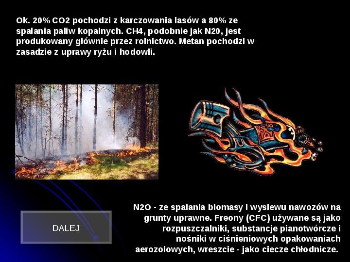 Szkodliwy wpływ czynników chemicznych na człowieka - Slajd 7