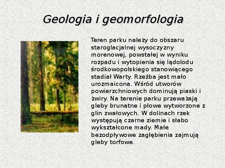Parki Narodowe - Slajd 10