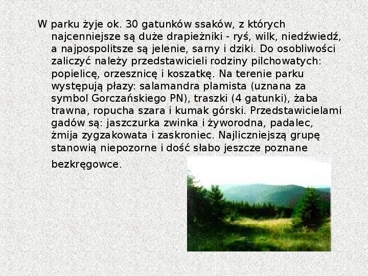 Parki Narodowe - Slajd 45