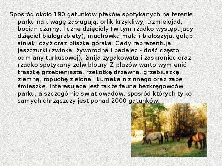 Parki Narodowe - Slajd 92