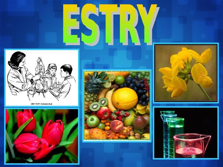 Estry - Slajd 1