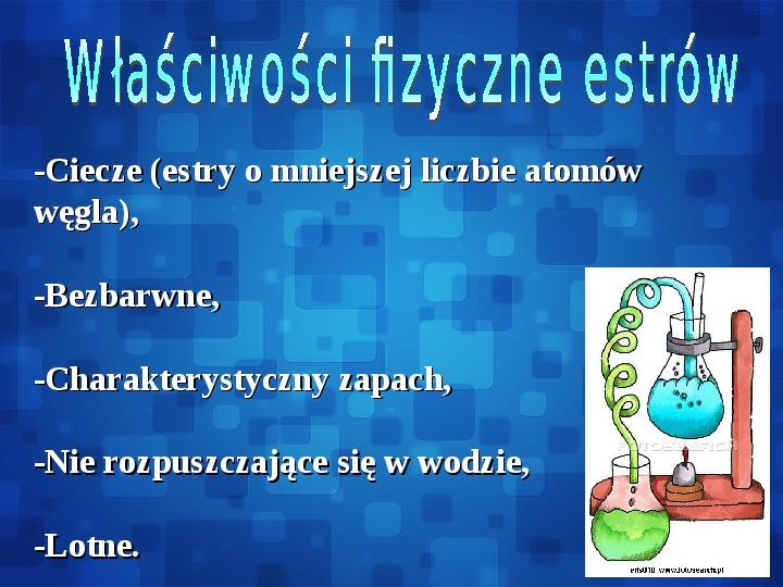 Estry - Slajd 10
