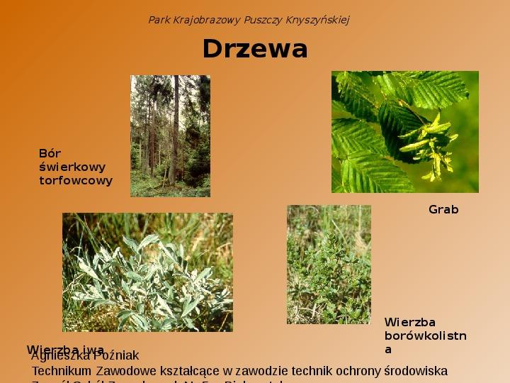 Park Krajobrazowy Puszczy Knyszyńskiej - Slajd 9