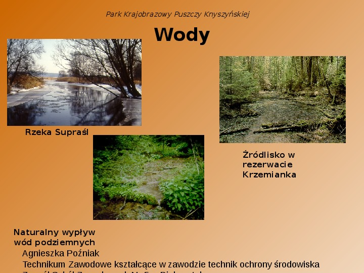 Park Krajobrazowy Puszczy Knyszyńskiej - Slajd 13