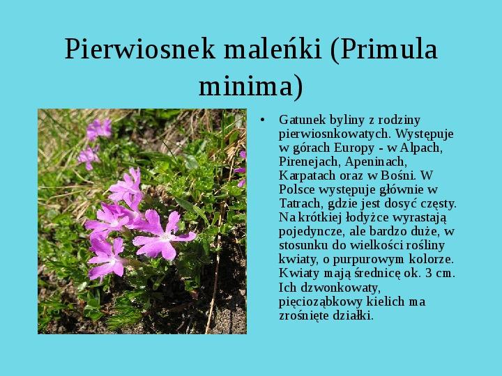 Tatrzański Park Narodowy - Slajd 12
