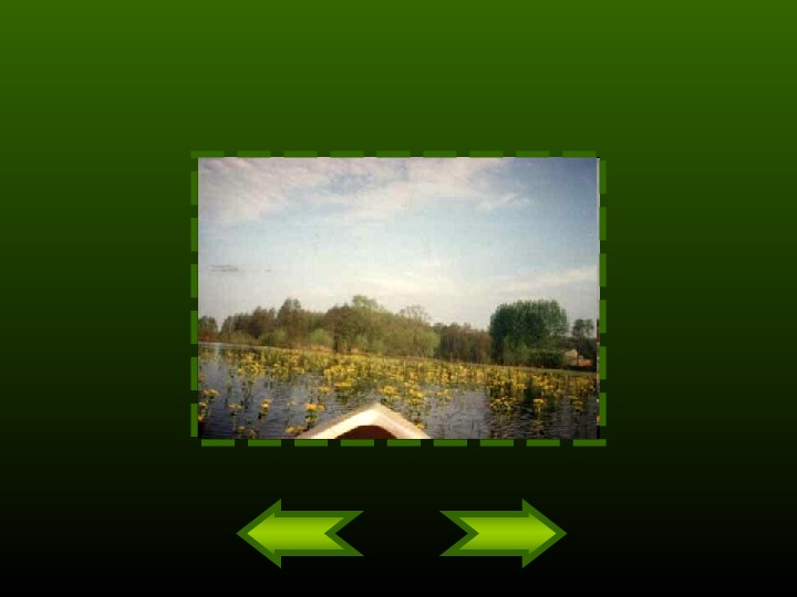 Biebrzański Park Narodowy - Slajd 9