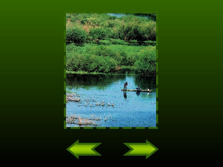Biebrzański Park Narodowy - Slajd 11