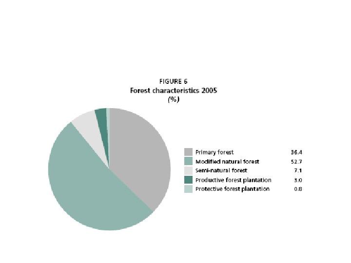 Funkcje i rola lasów - Slajd 13