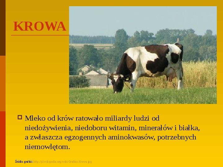 Co uprawiają i hodują ludzie w Polsce? - Slajd 5