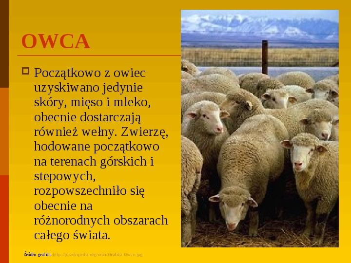 Co uprawiają i hodują ludzie w Polsce? - Slajd 7
