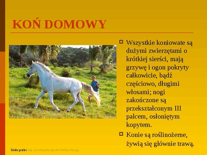 Co uprawiają i hodują ludzie w Polsce? - Slajd 9