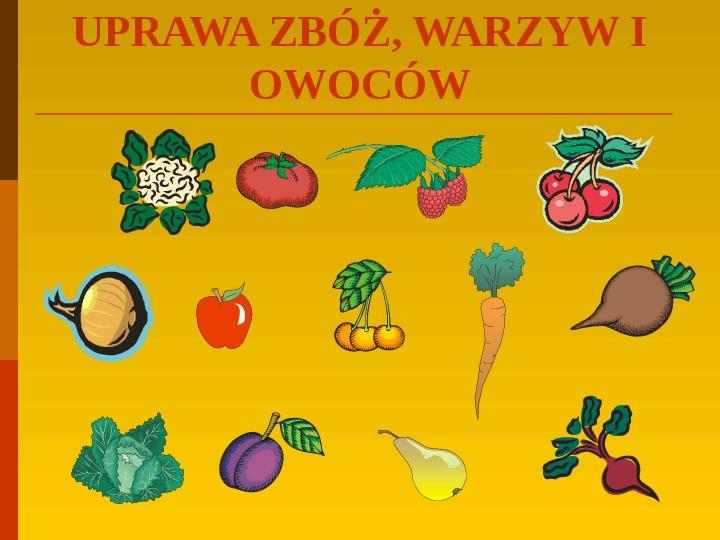 Co uprawiają i hodują ludzie w Polsce? - Slajd 13