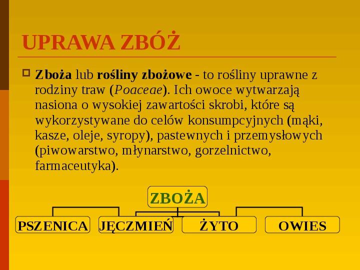 Co uprawiają i hodują ludzie w Polsce? - Slajd 14