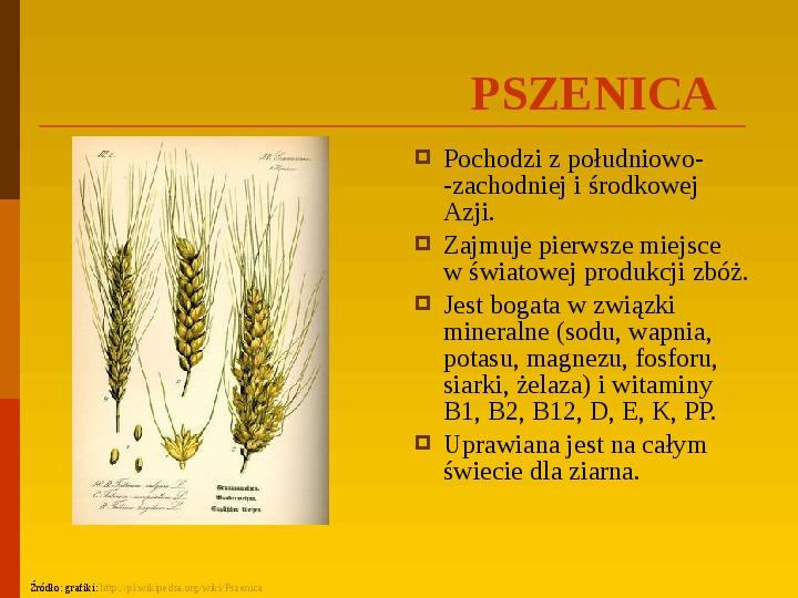 Co uprawiają i hodują ludzie w Polsce? - Slajd 15