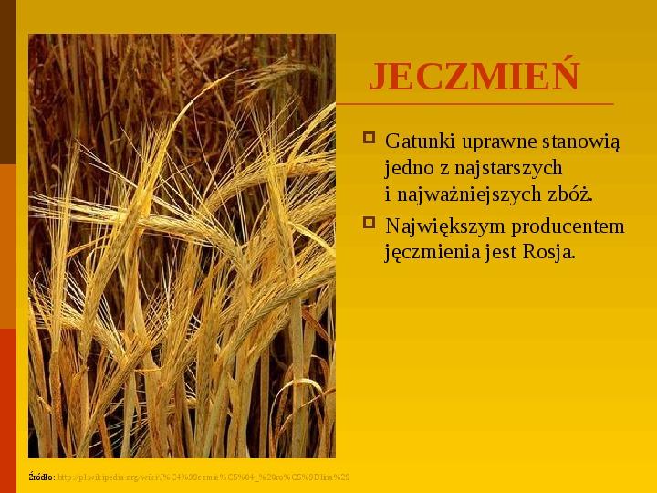 Co uprawiają i hodują ludzie w Polsce? - Slajd 16