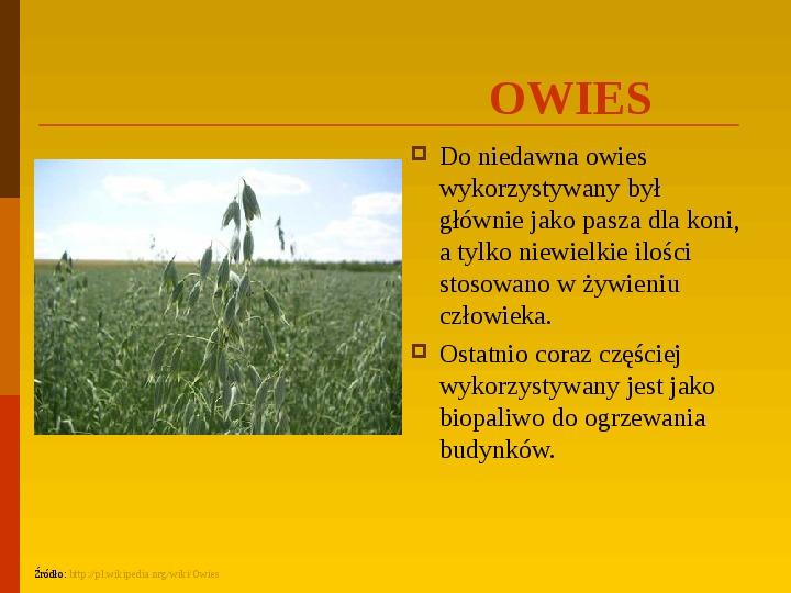 Co uprawiają i hodują ludzie w Polsce? - Slajd 18