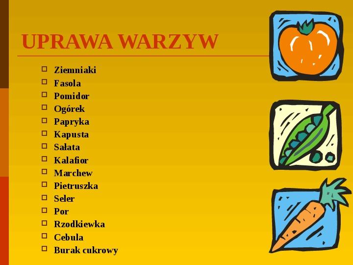 Co uprawiają i hodują ludzie w Polsce? - Slajd 19