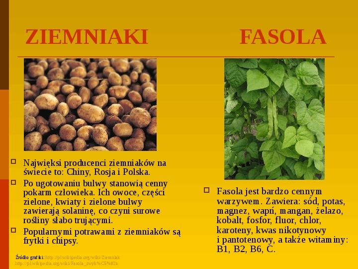 Co uprawiają i hodują ludzie w Polsce? - Slajd 22