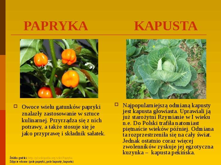 Co uprawiają i hodują ludzie w Polsce? - Slajd 24